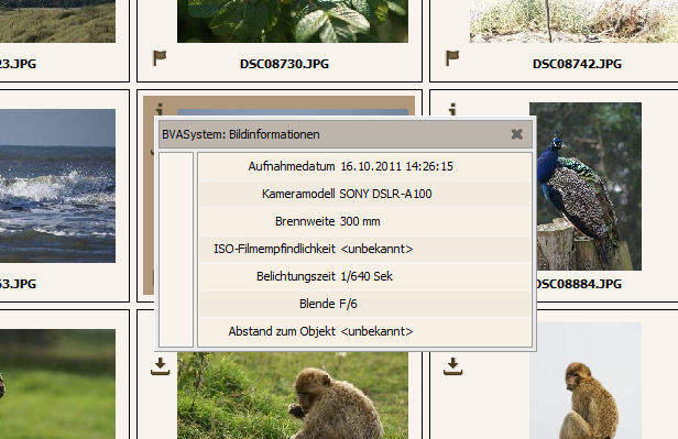 Bildinformations-Popupfenster mit EXIF-Daten
