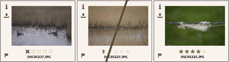 Automatische/Manuelle Bildbewertung in einer Miniaturbilderansicht