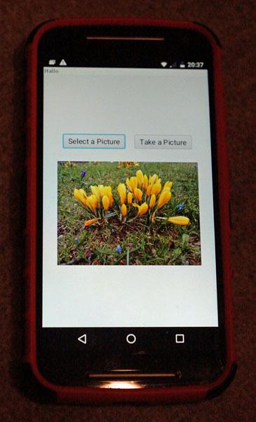 Foto der Testanwendung auf einem Handy